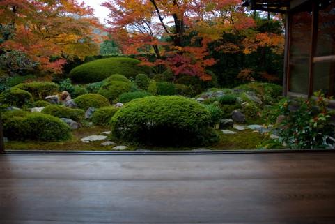 京都紅葉イメージ