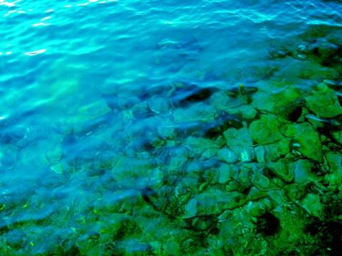 海の中イメージ