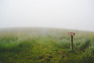 無人の荒野