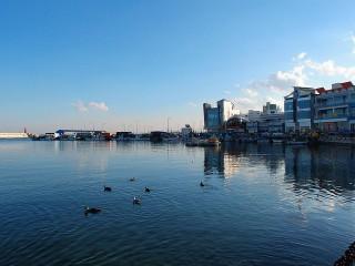 埼玉海イメージ