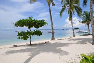 セブ島ビーチイメージ