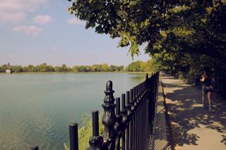 ニューヨークの公園