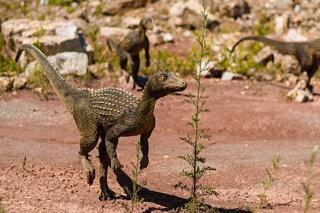 恐竜イメージ