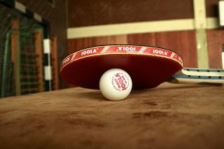 卓球イメージ