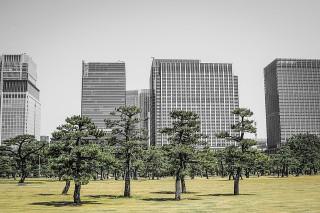 東京公園イメージ
