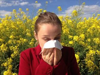 アレルギーイメージ